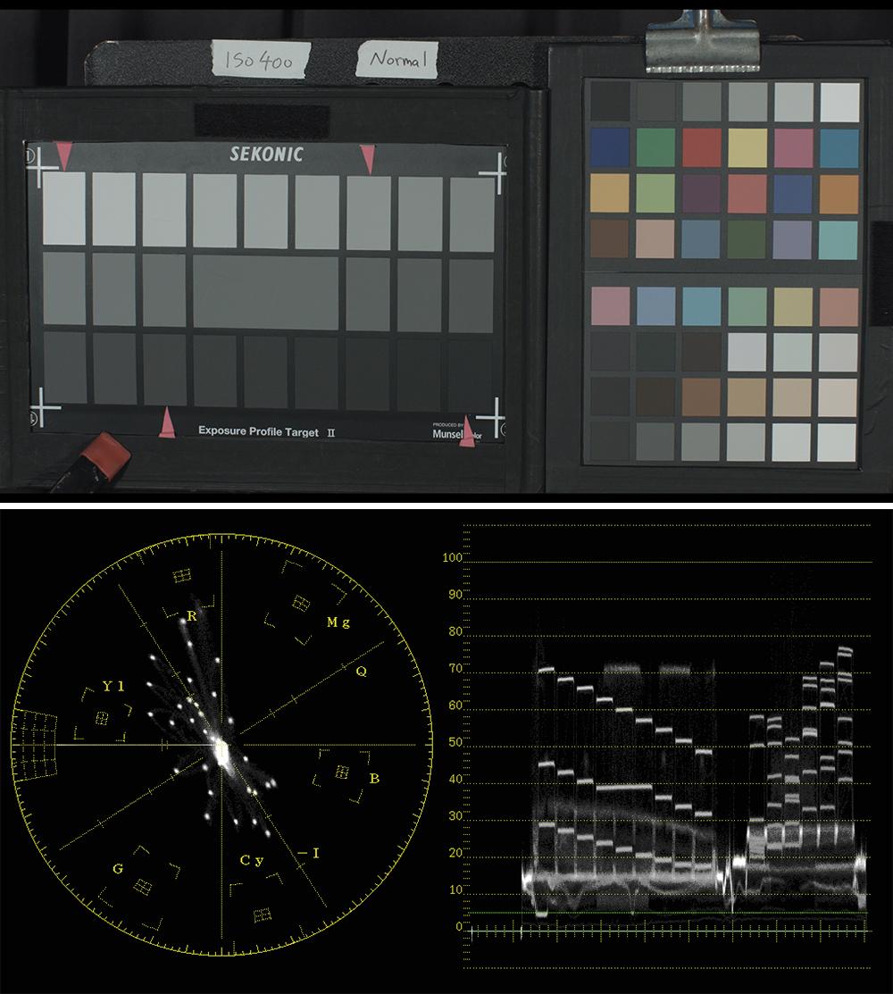 写真8、9 25段チャートのセンター部分が18%の反射率で、矢印部分が1STOPずつの明暗部。ISO400・絞りT5.6で撮影し、基準とした。下写真はその波形