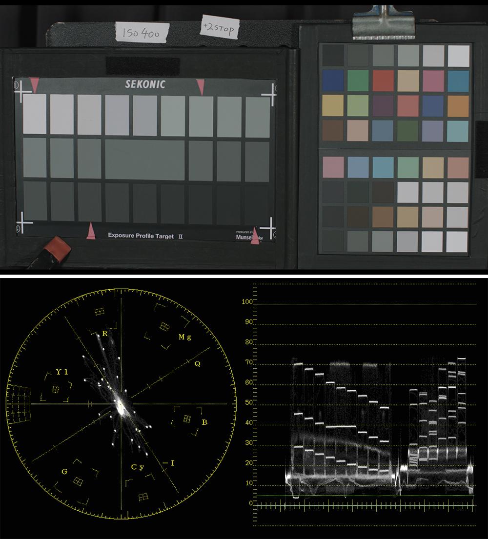 写真12、13 +2STOP開けた映像(写真10)をデジタル現像で基準チャートに近づけた