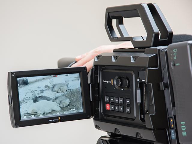 写真8 カメラに装備されている5型のフルHDモニター。視認性も高く非常に使いやすい。フルHDというスペックだけでなく、軽快なタッチ操作が可能なのも特徴だ