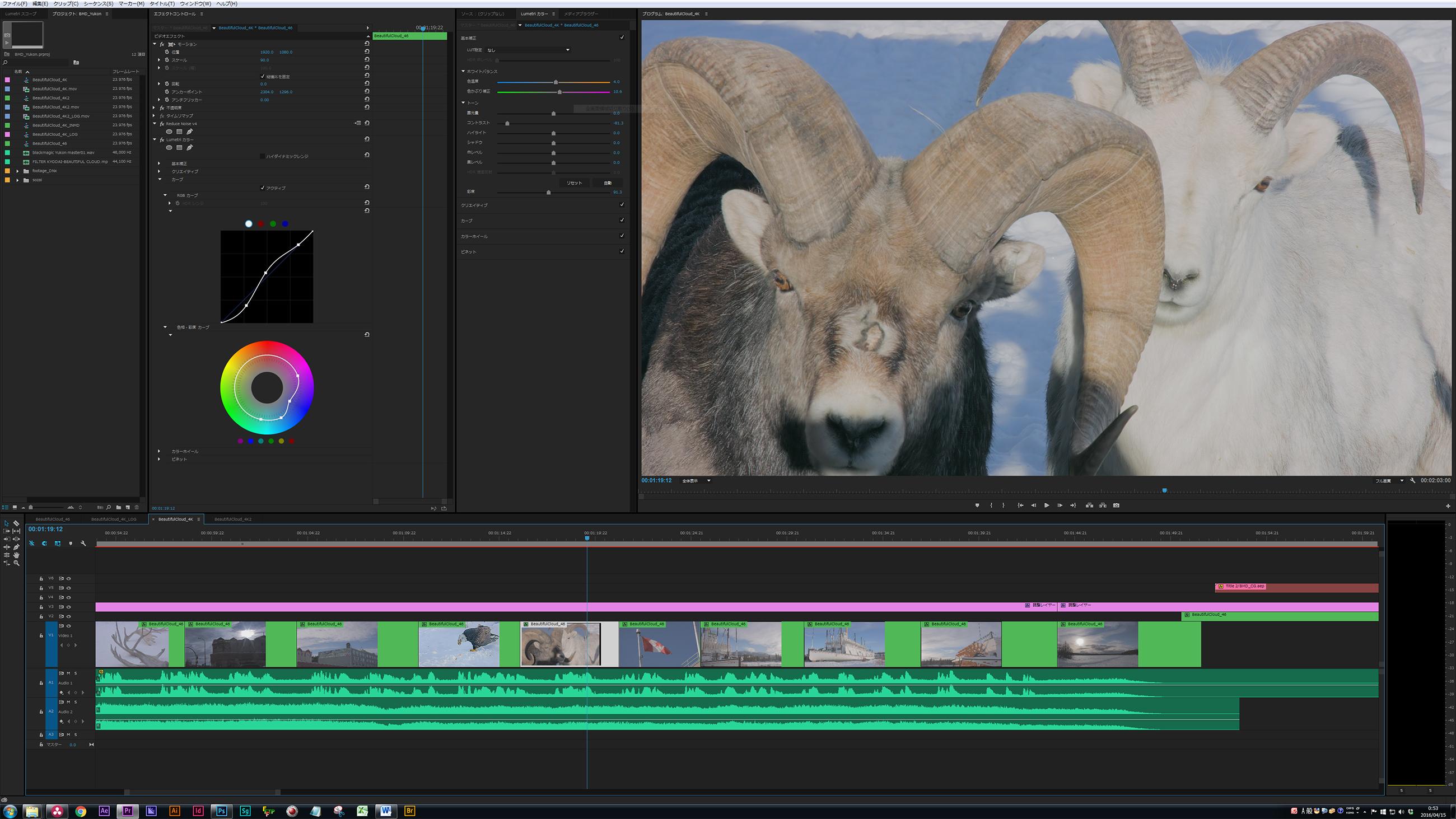 写真17 Premiere Proの編集画面。中間コーデックはDNxHR444